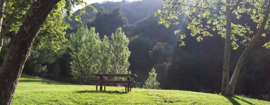 Wildwood Canyon – Relax