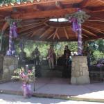 Ojai Lavender Festival Band