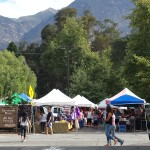 Farmer's Market Ojai